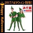 Peter_pan_costume