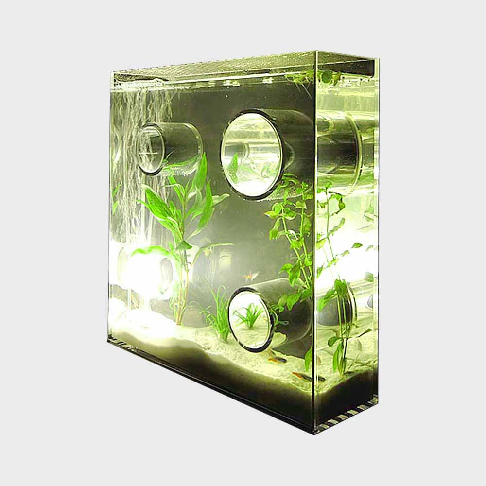 【100-3000円offクーポン&エントリーP5倍】アクアリウム 水槽/private agualium/標準サイズ [アクアリウム 水槽/インテリアはプライベートアクアリウム]