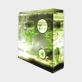 【100円クーポン】アクアリウム 水槽/private agualium/標準サイズ [アクアリウム 水槽/インテリアはプライベートアクアリウム]