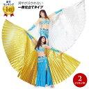 【訳あり】ベリーダンス 衣装 イシスウイング (スチール製棒2本付) コスチューム ステージ衣装 小物 belly dance アラ…
