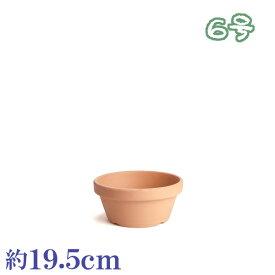植木鉢 陶器 おしゃれ サイズ 19.5cm 安くて植物に良い鉢 素焼鉢ASA 6号