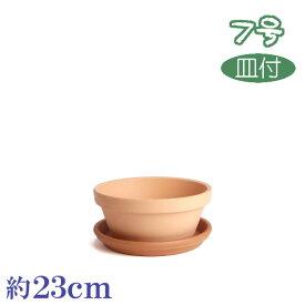 受皿付 素焼鉢ASA 7号 & イタリー受皿 23cm