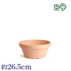 植木鉢 陶器 おしゃれ サイズ 26.5cm 安くて植物に良い鉢 素焼鉢ASA 8号