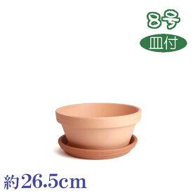 受皿付 素焼鉢ASA 8号 & イタリー受皿 25cm