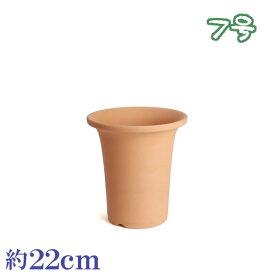 植木鉢 陶器 おしゃれ サイズ 22cm 安くて植物に良い鉢 素焼並ラン鉢 7号
