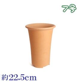植木鉢 陶器 おしゃれ サイズ 22cm 安くて植物に良い鉢 素焼長ラン鉢 7号