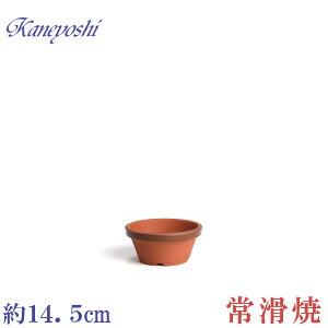 植木鉢 陶器 おしゃれ サイズ 14cm 安くて丈夫 駄温鉢 浅型 4.5号