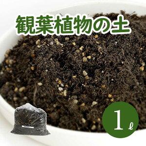 葉色が良くなる 観葉植物の土 小分け 1L (1L×1袋) 元肥入り pH調整済み 観葉植物用 土 パーク堆肥 ピートモス ココピート 赤玉土 鹿沼土 軽石 水はけ 保肥力 土 室内 小分け ガーデニング資材