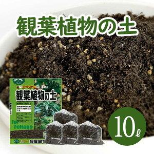 葉色が良くなる 観葉植物の土 小分け 10L (6L×1袋・1L×4袋) 元肥入り pH調整済み 観葉植物用 土 パーク堆肥 ピートモス ココピート 赤玉土 鹿沼土 軽石 水はけ 保肥力 土 室内 小分け ガーデニン