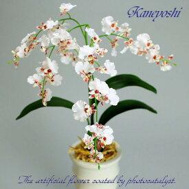 お祝い 造花 フラワーギフト 光触媒オンシジューム 1本立 ホワイトレッド