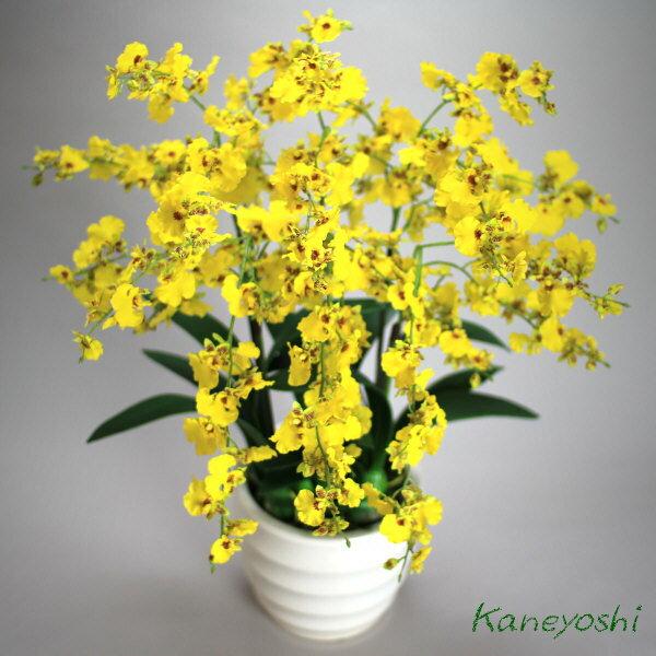 送料無料 お祝い 造花 フラワーギフト 光触媒オンシジューム 6本立 イエロー