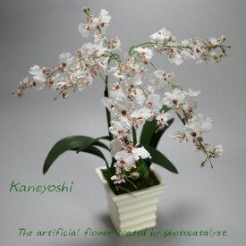お祝い 造花 フラワーギフト 光触媒オンシジューム 2本立 ホワイトレッド