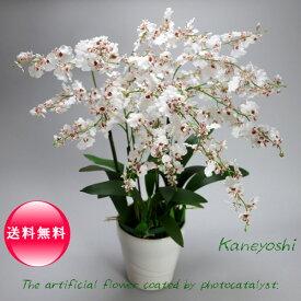 お祝い 造花 フラワーギフト 光触媒オンシジューム 6本立 ホワイトレッド