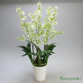 お祝い 造花 フラワーギフト 光触媒オンシジューム 5本立 ホワイトグリーン