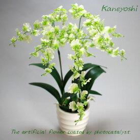 お祝い 造花 フラワーギフト 光触媒オンシジューム 3本立 ホワイトグリーン