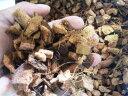 成虫管理にお勧め!ココマット60L 大袋(粗目ココチップ)(業務用パック、送料込み)