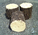 産卵木 (良質クヌギ材) 特Bクラス ビックサイズ