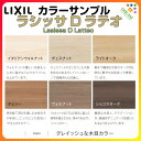 Ll00an color