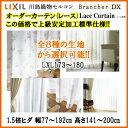 Brancherdx-lace-106