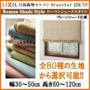 Brancherdx rsp 001