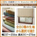 Brancherdx rsp 041