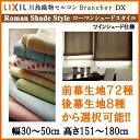 Brancherdx rst 003