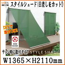 Styleswaku11920-win