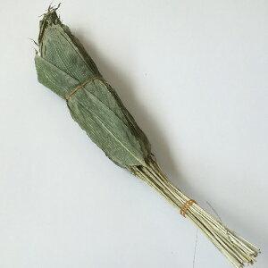国産 軸付笹の葉 乾燥 50枚 青森県産【和菓子材料】◆宅配便配送のみ