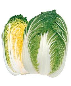 白菜種子 タキイ種苗 黄ごころ80 20ml 黄芯秋冬どり白菜