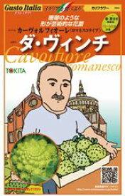 イタリア野菜種子 トキタ種苗 カーヴォルフィオーレ ダ・ヴィンチ 小袋