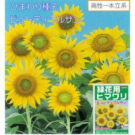 ひまわり種子 サカタのタネ 花の種 ビューティフルサン 1kg サカタ 種