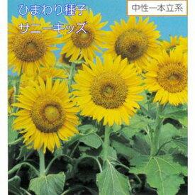 ひまわり種子 サカタのタネ サカタ 種 花の種 サニーキッズ 1L