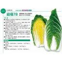 白菜種子 トーホク 結福78(ゆいふく78) コート5000粒