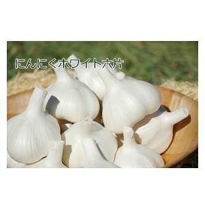 青森県産 種ニンニク ホワイト六片 L玉 1kg種子 ニンニク
