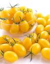 ミニトマト種子 サカタのタネ 野菜の種 イエローアイコ 小袋