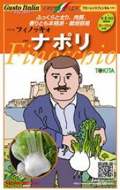 イタリア野菜種子 トキタ種苗 フィノッキオ ナポリ 小袋