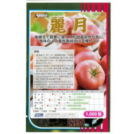 トマト種子 サカタのタネ 麗月(れいげつ)サカタ 種 1000粒