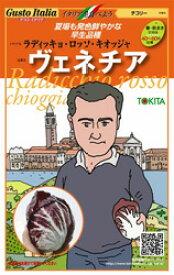 イタリア野菜種子 トキタ種苗 ラディッキョ・ロッソ・キオッジャ ヴェネチア 小袋