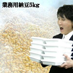 納豆125人分!5kgの納豆♪とにかく沢山食べたい!そのご要望にお答え致します!業務用としても♪大量!【RCP】業務用納豆10個 納豆 なっとう ナットウ 納豆菌 業務用 大容量 お取り寄せ 大量