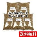 【送料無料】お得用 カモの餌 アヒルのエサ 水鳥のえさ 20Kg (4kg x 5袋)