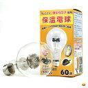 アサヒ電子 ヒヨコ電球60W(硬質球)