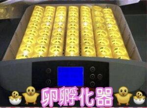最大56個 全自動孵卵器 孵卵機 ふ卵器 孵化器 インキュベーター