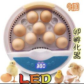 LED自動孵卵器 インキュベーター 検卵ライト内蔵 鳥類専用ふ卵器 孵化器 9個 子供教育用 家庭用