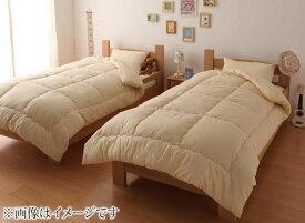 布団セット シングル 2組 20点セット 床畳用 掛け敷き布団セット 布団