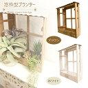 Windowplanter_thm