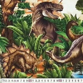 新入園、新入学、TT-2845 恐竜の世界 シーニック 110*50 コットンプリント生地