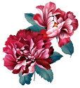 タトゥーシールタトゥーシール大型花/wqa06