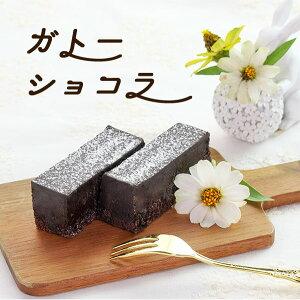 ギフト スイーツ ケーキ かわいい チョコ プチギフト ラッピング おしゃれ プレゼント 洋菓子 誕生日 バースデー チョコレートケーキ ガトーショコラ(270g) 春雪さぶーる 国産 業務用 家庭