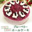 ケーキ 送料無料 かわいい ギフト プレゼント スイーツ 洋菓子 誕生日 バースデー ホールケーキ ブルーベリーホール(…