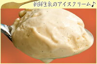 業務用アイスクリーム2リットルアイスクリームバニラアイスクリーム業務用アイス(キロ)